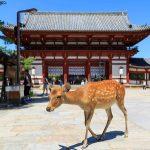 奈良県で人探し調査が可能な探偵事務所