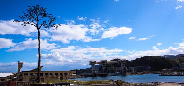 岩手県で人探ししたい人におすすめの探偵事務所|探偵事務所の選び方